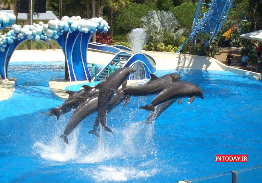 تصاویر پارک آبی آکوالند آنتالیا