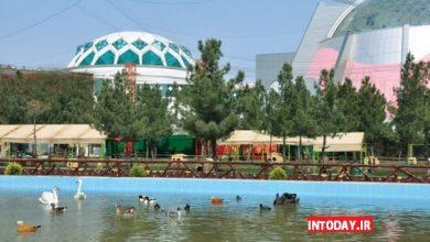 Photo of باغ پرندگان مشهد کجاست؟