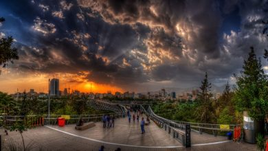 تصویر از پل طبیعت تهران