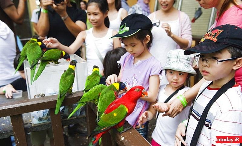 باغ پرندگان کوالالامپور | Kuala Lumpur Bird Park
