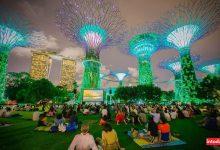 تصویر از باغ های بای د بی سنگاپور