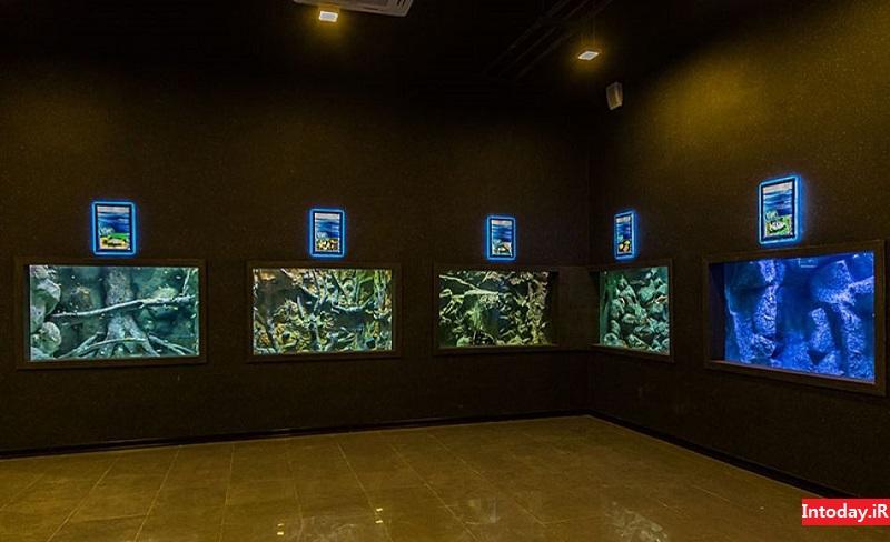 تصاویر آکواریوم اصفهان | Aquarium Isfahan