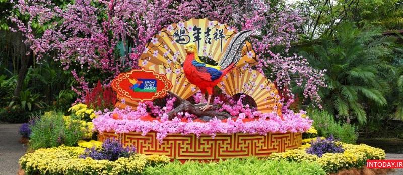 تصاویر باغ پرندگان جورونگ سنگاپور