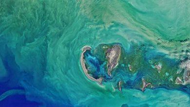 تصویر از عکس دریای خزر از ایستگاه فضایی ناسا