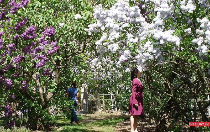 تصاویر باغ گیاه شناسی باتومی گرجستان