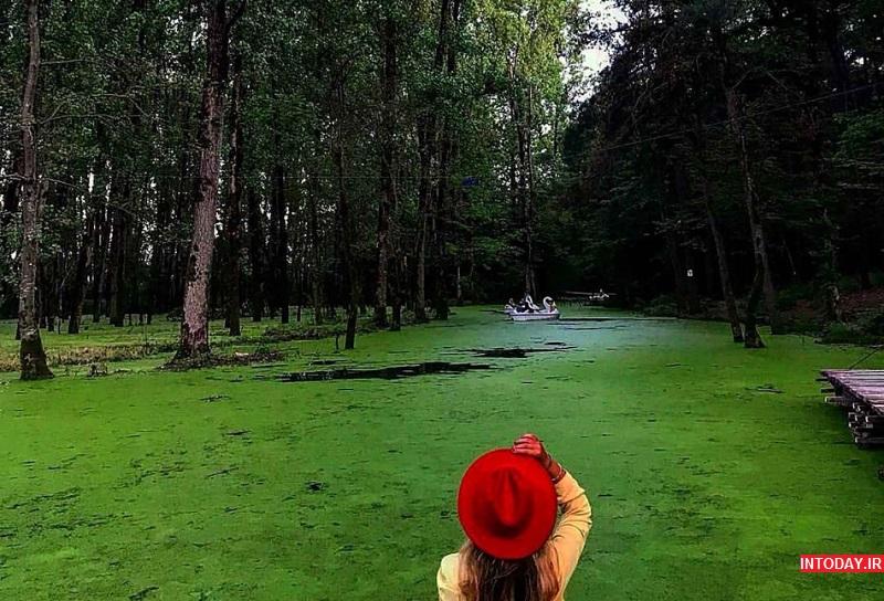 تصاویر پارک جنگلی سراوان رشت