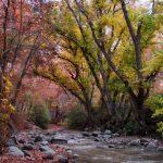 تصاویر روستای برغان ساوجبلاغ استان البرز