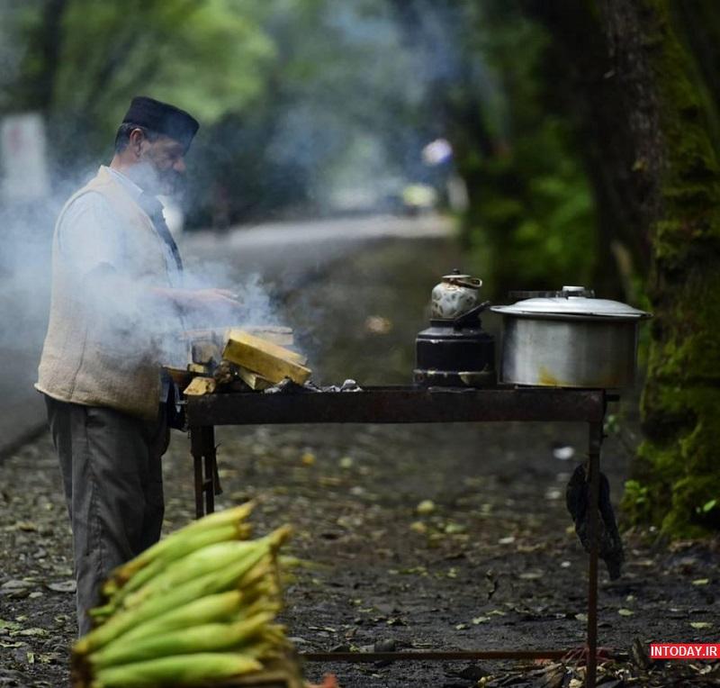تصاویر پارک جنگلی گیسوم تالش گیلان