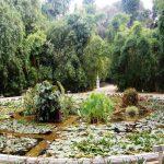 کهن ترین باغ گیاه شناسی جهان