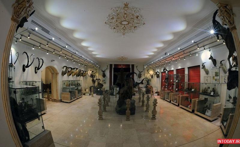 تصاویر موزه حیات وحش دارآباد تهران
