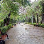 تصاویر پارک شهر تهران