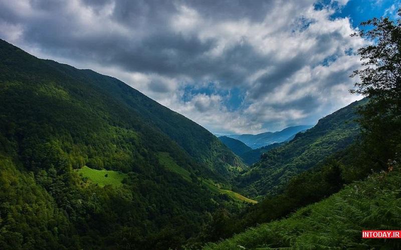 تصاویر جنگل فندقلو اردبیل