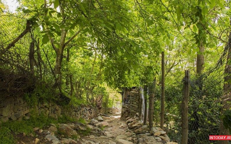 تصویر از مسیر درکه