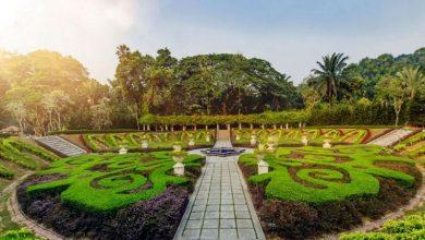 تصاویر باغ گیاه شناسی پردانا کوالالامپور مالزی