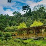 عکس پارک های کوالالامپور