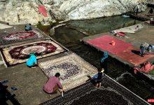 تصویر از چشمه علی شهر ری