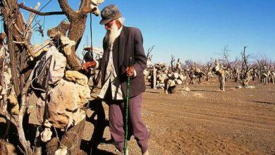 باغ سنگی درویش خان سیرجان