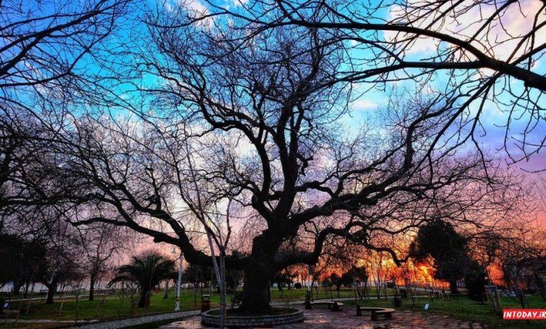 پارک فنرباغچه استانبول