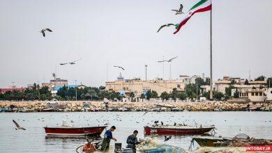 اسکله جفره بوشهر