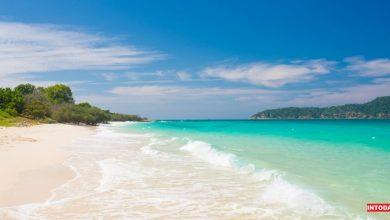 Photo of جزیره بامبو پاتایا با شفاف ترین آب های ساحلی | راهنما