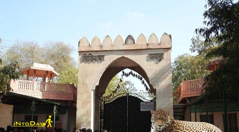باغ وحش جیپور