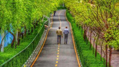 پارک های مخصوص دویدن در تهران