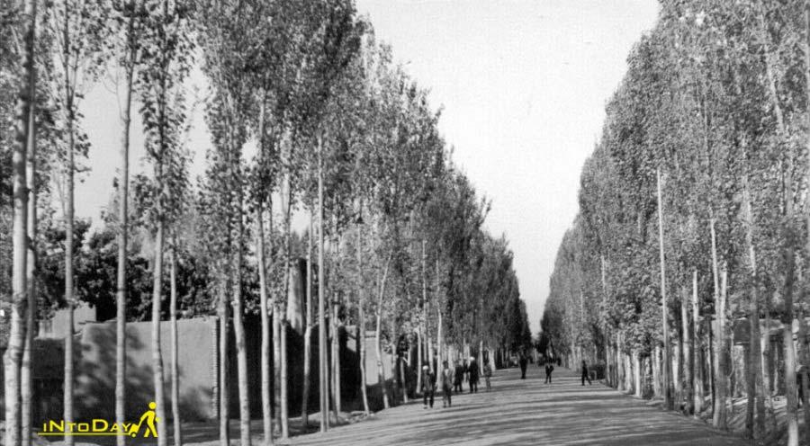 تاریخچه شهر طرقبه
