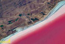 Photo of دریاچه مهارلو فارس با رنگ سرخ و فلامینگو