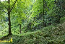 تصویر از مسیریابی آبشار کبودودال علی اباد کتول با نقشه
