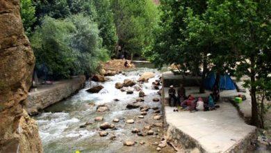 تصویر از چشمه ناز ونک سمیرم
