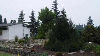 باغ گیاه شناسی و اکولوژیکی نوشهر