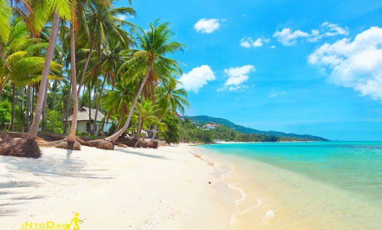 جزیره سامویی تایلند