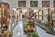 تصویر از موزه حشرات جهان و عجایب طبیعی