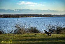 تصویر از پارک ملی بوجاق با تالاب بوجاق کیاشهر