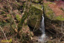 تصویر از آبشار سرخو
