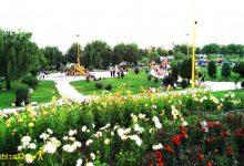 تصویر از پارک تخم مرغی ارومیه
