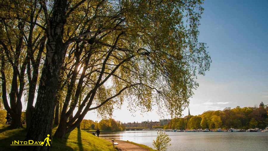 پارک و باغ دجور استکهلم
