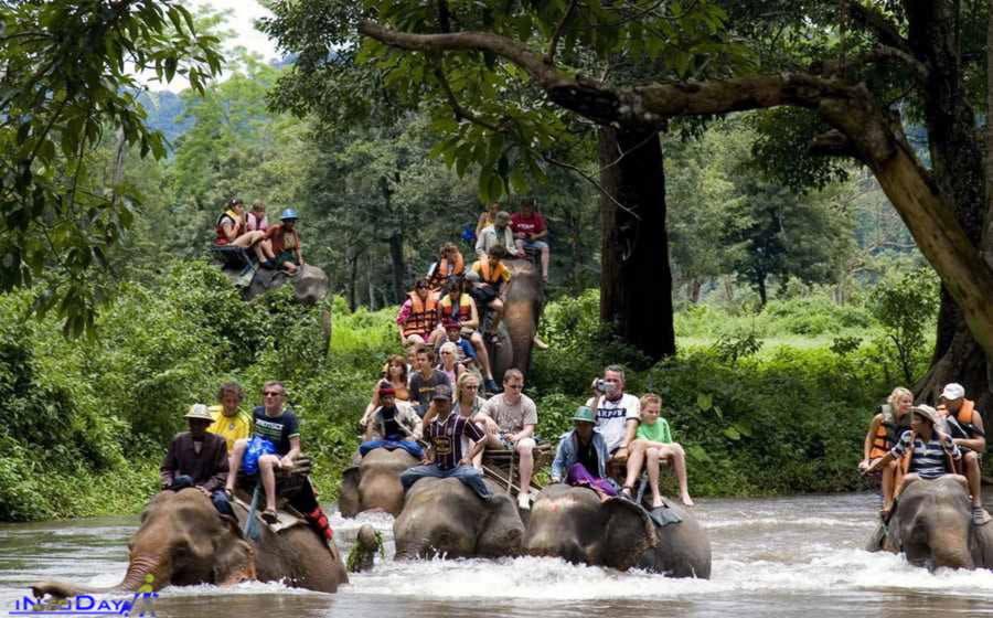 سافاری پارک فیل ها اوبود