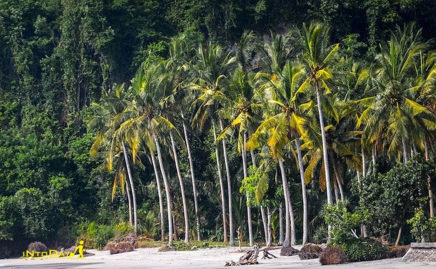 بهترین جزایر نزدیک بالی
