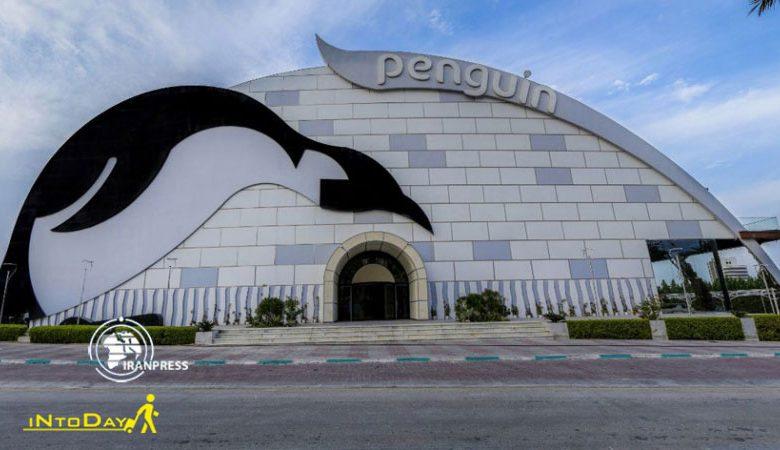 پارک برفی پنگوئن کیش