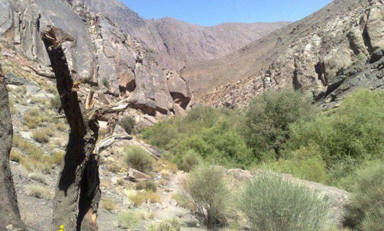 دره شنگستان کرمان