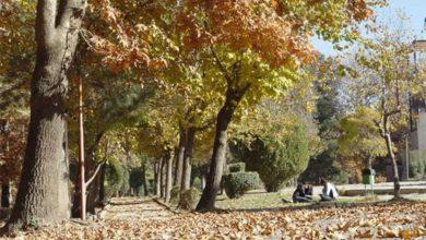 پارک ملت سنندج