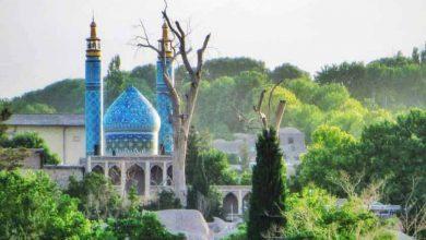 مسجد جامع راین